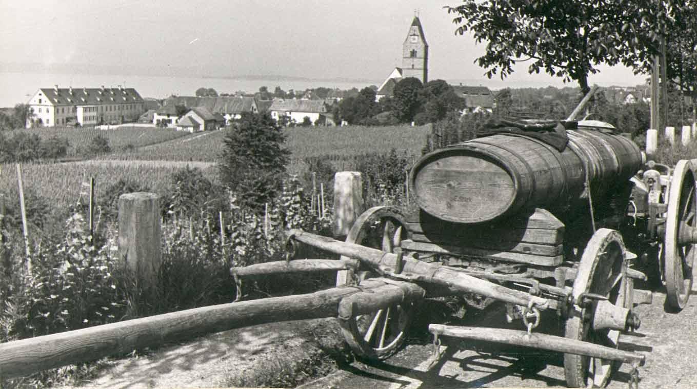 historie-winzerverein-hagnau